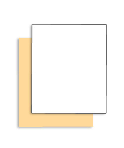 Singles Coated Front 105 lb. Tag Carbonless Paper