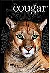 Cougar® 80lb. Text
